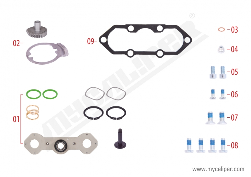 Caliper Mechanism Repair Kit (Right)