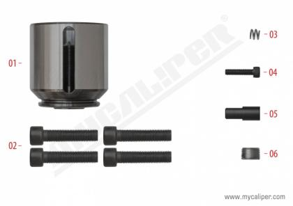 Caliper Piston Kit (Right)