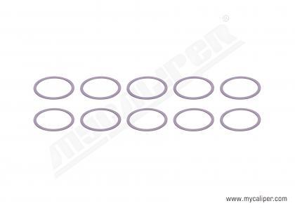 Caliper Ring Kit